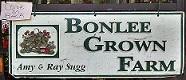 bonlee_logo_sm
