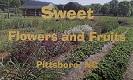 sweetfarm_logo_sm