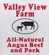valley view logo_sm