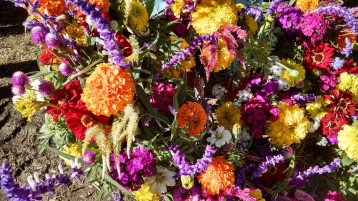 cut flowers from Perry-Winkle Farm