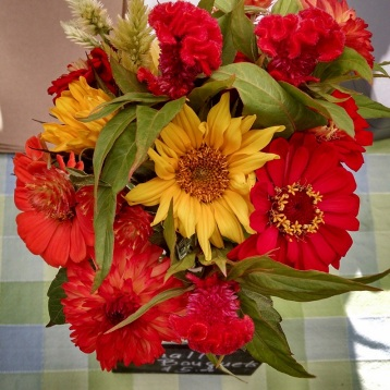 cut flowers from the Sweet Farm