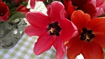 flowers from Sweet Farm