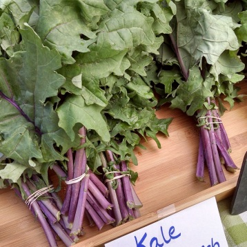 red kale from the Sweet Farm